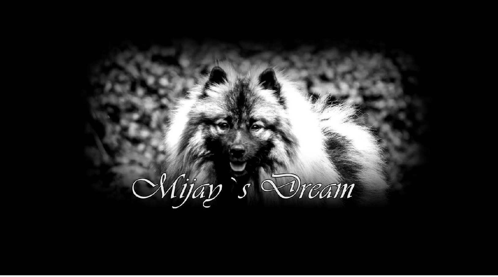 Mijay´s Dream.