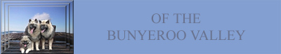 Of The Bunyeroo Valley